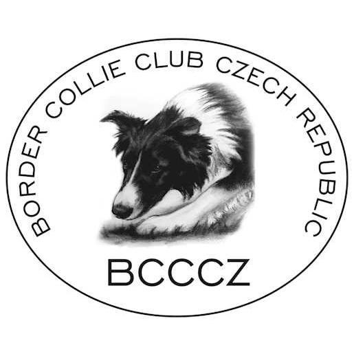 logo BCCCZ