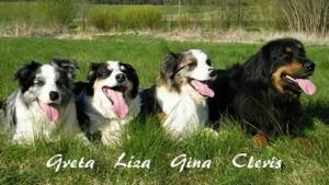 Setkání Greta,Líza, Gina a Cleris